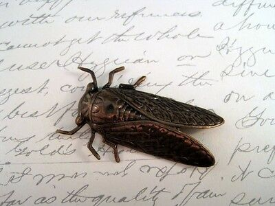 X-Large Antiqued Brass Cicada Stamping (1) - ANTRAT4931 Jewelry Finding