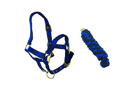 Horse ( Cob) Navy Blue And Black Head Collar & Matching Lead Rope Set