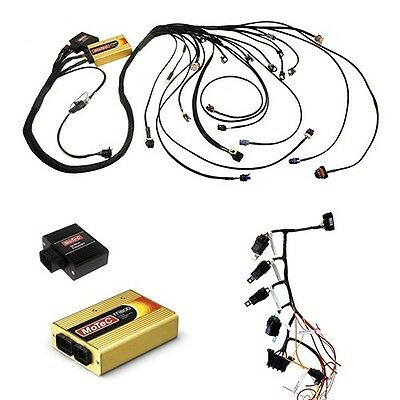 Enjoyable Cbm Motec800 Kit Ls Series Stand Alone Wiring Harness With Motec Wiring Cloud Oideiuggs Outletorg