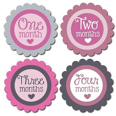 Baby Monthly Stickers, Milestone Stickers, Put on white onesie ® for photo Girls
