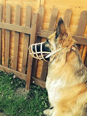 New Light leather Dog Muzzle German Shepherd and Other Similar Snout