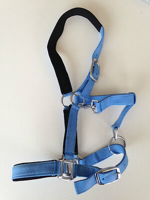 Halter, Headstall, Tough Padded Webbing Pony, Cob, Full Size