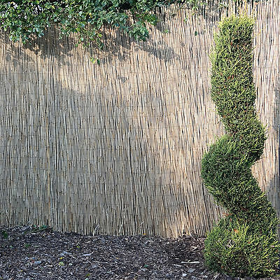 Reed Screening Rolls 4M Long 5 Heights Available Garden Screen Fence Panel