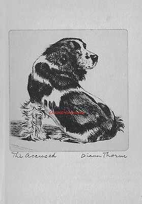 "ENGLISH COCKER SPANIEL  ""THE ACCUSED"" Vintage Dog Print 1936 Diana Thorne"