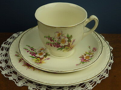 "Embossed ""briardale"" Royal Falcon Ware Weatherby Trio Cup Saucer Plate"