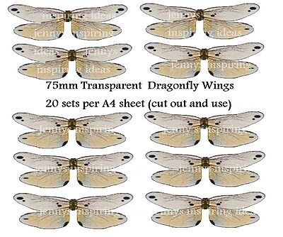 OOAK Dragon fly wings transparency sheet 20 pairs for only 2 euro
