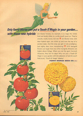 1965 Vintage ad for Ferry-Morse Seed Co.`Art`Fairy, Tomatos, Marigold (051814)