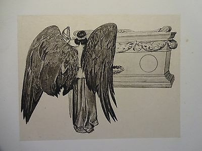 Beautiful B/W Print-ANGEL WINGS-from The Army & Navy by W. Allen, 1890 by G.B.