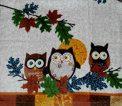 Thick Kitchen Dish Towels Crochet Tops Listing #T563 Autumn Owl