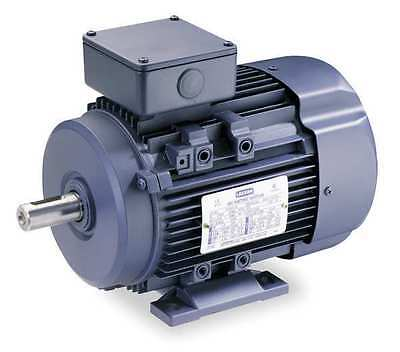 LEESON 192051.30 Metric Motor, 230/460V, Ball, 60/50 Hz, REV