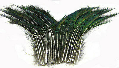 """wholesale 5-100 PCS nature peacock feather swor 12-14"""" /30-35 cm Left and right"""