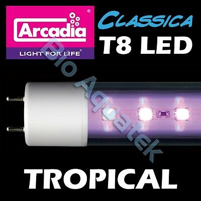 Arcadia Classica T8 LED Lamp Tube Light - Tropical - Convert Fluorescent T8 • EUR 37,26