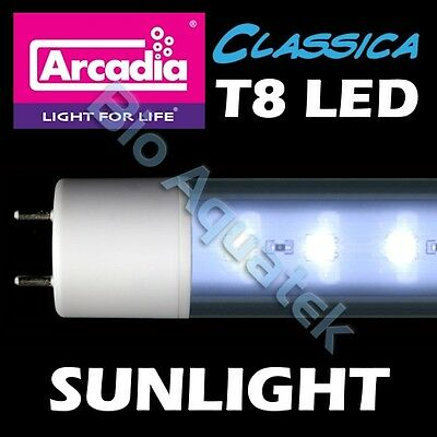 Arcadia Classica T8 LED Lamp Tube Light - Sunlight - Convert Fluorescent T8