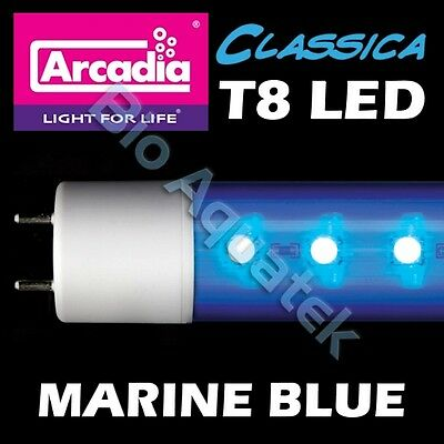 Arcadia Classica T8 LED Lamp Tube Light - Marine Blue - Convert Fluorescent T8