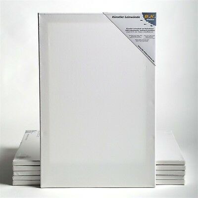"6 B.K. BASIC STRETCHED CANVASES | ~24x35"", 60x90 cm 