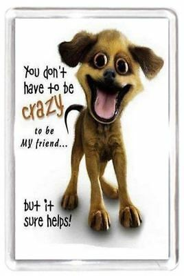 Funny Crazy Mad Dog Pet Good Best Friend Quote Saying Gift Novelty Fridge Magnet
