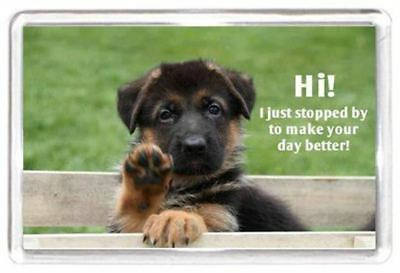 Fridge Magnet Funny Dog Animal Pet Quotes Saying Collectors Gift Present Novelty