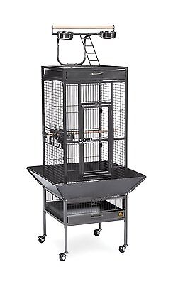 New Wrought Iron Bird Cage Non-toxic Black 4-Cup 2-Wood Perch Playtop Seed guard