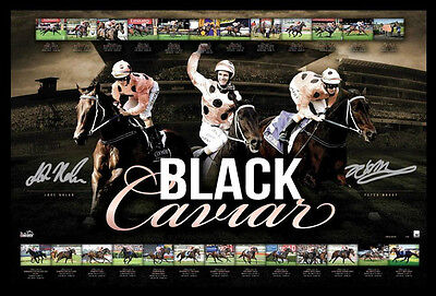 Black Caviar Career 25 Wins Signature By Peter Moody and Luke Nolen Print Framed