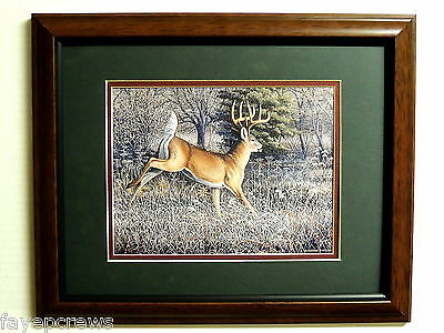Deer Picture Big Buck White Tail Deer  Deer Hunting Matted Framed 11X14