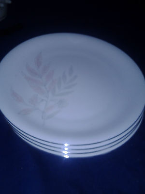 """KPM Krister 10"""" Dinner Plates Set of 4  White with Silver trim  German made"""
