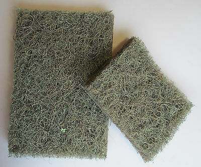 Rubberised Horsehair for Model Hedges Trees Scenery Railways Wargames 25mm
