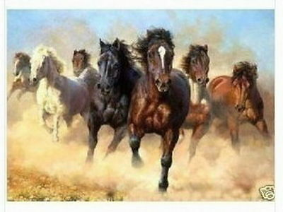 Modern Abstract Huge Wall Art Oil Painting On Canvas-Horse (no framed)