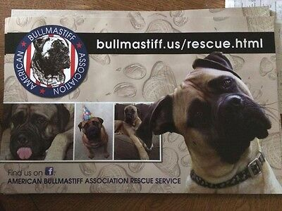 Large Bullmastiff Rescue Car Magnet