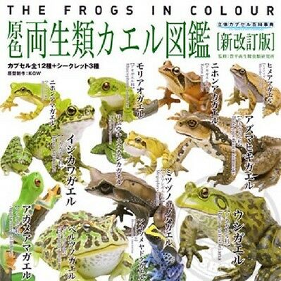 Yujin The Frogs In Colour Gashapon Collection Full Set of 15 100% New Authentic