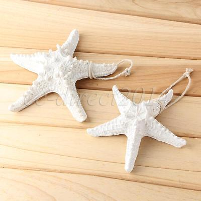 Starfish Ocean Sea Shell Star Tropical Ornament Home Wall Party Decoration White