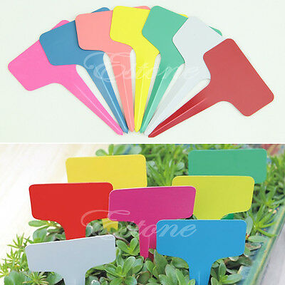 100pcs Plastic Plant T-type Blank Tags Marker Nursery Garden Labels Pot 60x100MM