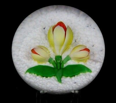 Gorgeous BACCARAT  Yellow CROCUS Flower Glass PAPERWEIGHT, LE 147/150 1981