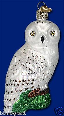 *Great White Owl* (16079) Old World Christmas Glass Ornament - NEW