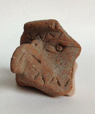 Pre Columbian Fragment Eagle Head