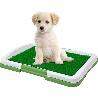 DOG MAT POTTY TRAINER PUPPY INDOOR TRAY GRASS PATCH PAD KENNEL HOUSE FOOD PAW