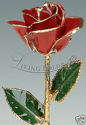 Red Rose by Living Gold - Real Rose Dipped in 24k Gold - VALENTINE'S DAY GIFT!