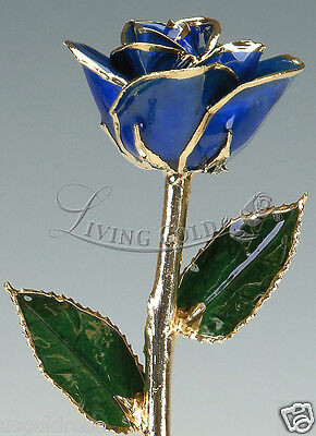 Dark Blue Rose by Living Gold - Real Rose Dipped in 24k Gold - VALENTINE'S DAY!