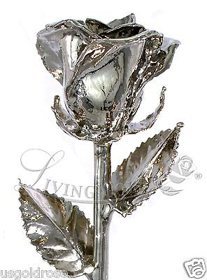 "Real Platinum Rose by Living Gold - ""Venus Rose"" (12"") - VALENTINE'S DAY GIFT!"