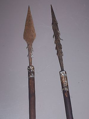 African arrows. Flèches africaine