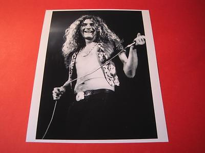 LED ZEPPELIN  10x8 inch lab-printed glossy photo P/1300