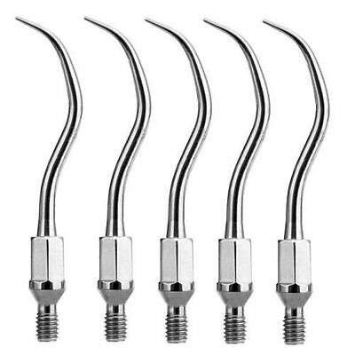 5X Dentaire Multifuction Scaler Tips GK1 For KaVo SONICflex Airscaler Handpiece