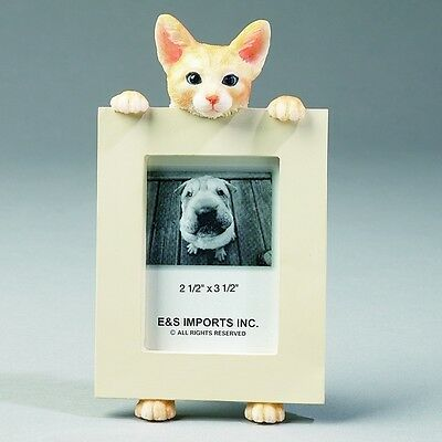 Tabby Orange Cat ~ Picture Frame #8