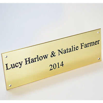 """Engraved Solid Polished Brass 5""""x2"""" Plaque Plate Sign Bench Memorial Pet +Screws"""