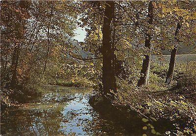 77-Les Bords De L Yerres-N°133-D/0269