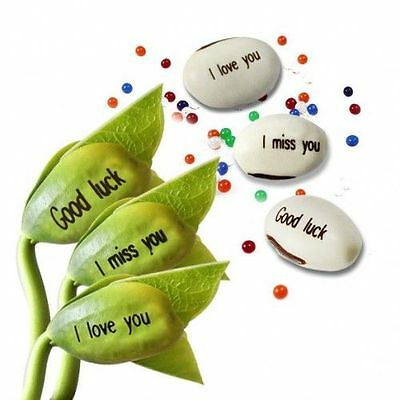 Magic Message Beans Plant Valentines - I LOVE YOU, GOOD LUCK, FRIENDS, THANK YOU