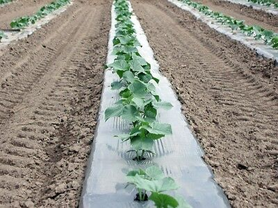 "Plastic Mulch Row Cover 48""x2400ft 1.25mil Black Weed Barrier Tomato Watermelon"