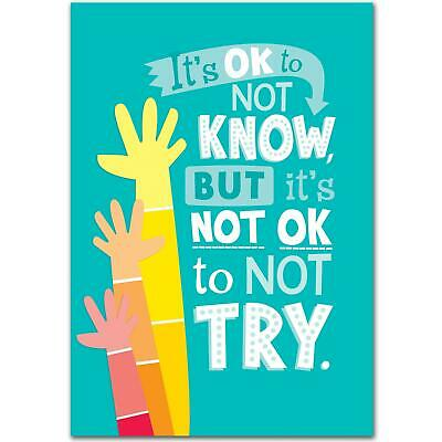 It's OK to Not Know... Inspire U Poster - Classroom Display Poster