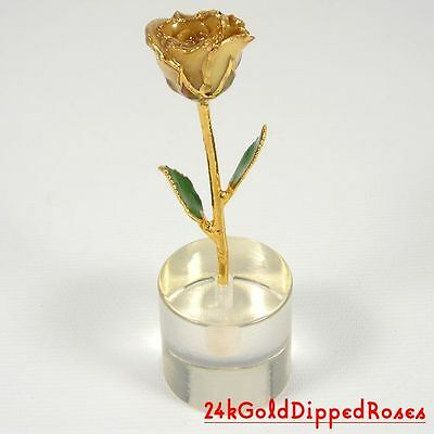 """24k Gold Dipped Ivory White Rose & Stand - 3"""" (Free Christmas Gift Box)"""