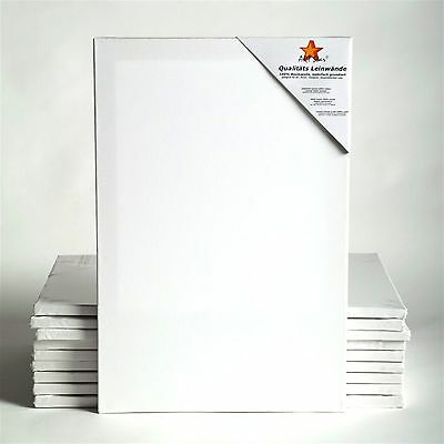 "10 ART-STAR STRETCHED CANVASES | ~28""x40"", 100% cotton 