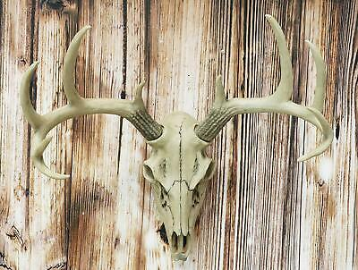 "19""H Antler Skull Buck Deer Head Bust Wall Hanging Figurine Home Decor Plaque"